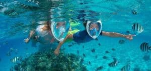 The Best 5 Full Face Snorkel Masks Reviewed & Buyer's Guide