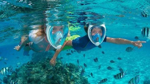 The Best 5 Full Face Snorkel Masks Reviewed