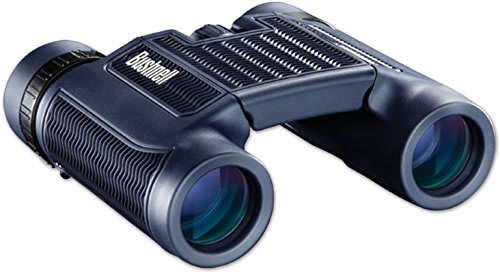 Bushnell H20 8x25 Waterproof Compact Binoculars