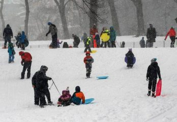 Best Snow sleds types