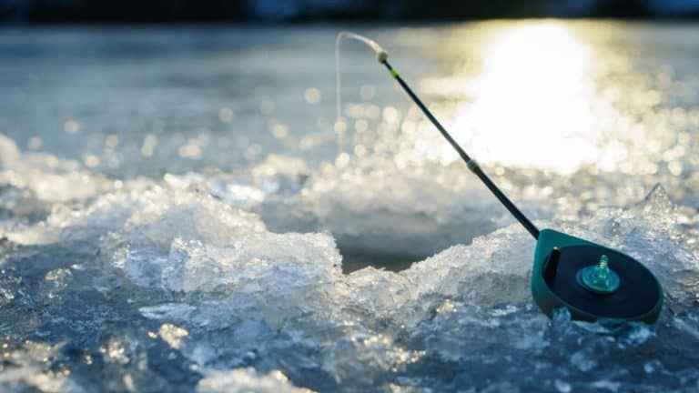 Best Ice Fishing Lines In 2021