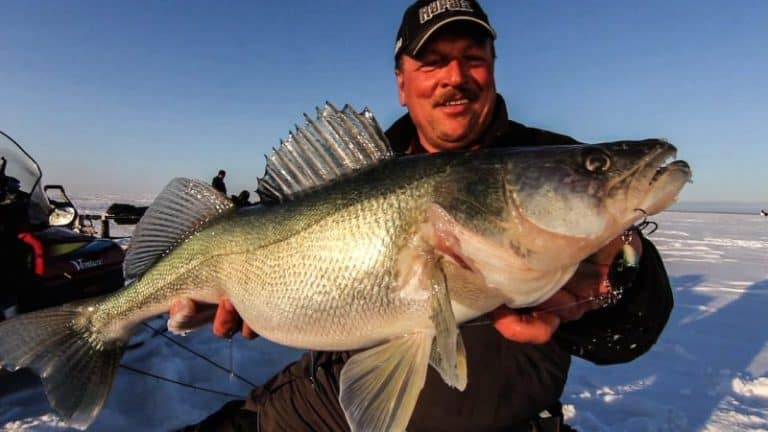 How To Catch Walleye Ice Fishing