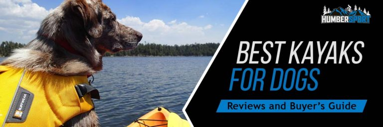Best Kayak For Dogs In 2021